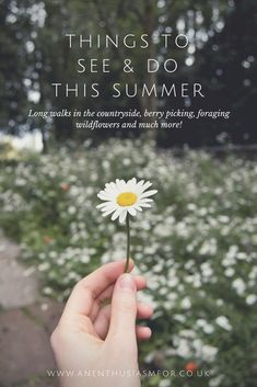 07fd2a01bb0a 7241 Best Sweet Summertime images in 2019