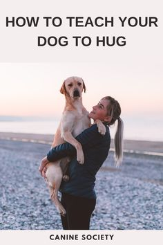 """This trick does take balance and good muscles, so ask your vet if you are unsure whether your dog is physically able to perform this trick. Never force your dog into position or make them hold it for longer than they can do on their own. If you are attempting the 2-handed hug, you may have to build up your dog's back muscles and """"sit pretty"""" duration first. Dog Commands Training, Back Muscles, Hug, Your Dog, Labrador Retriever, Teaching, Animals, Pretty, Exotic"""