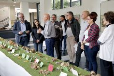 Móstoles celebró un año más las Jornadas Micológicas