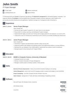 professional professional resume examplesbasic resumecv