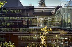 rojkind arquitectos surrounds falcón HQ with modular planters