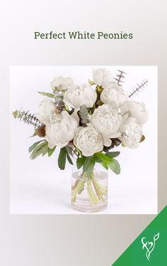 Product Details:  10 White peonies Eucalyptus leaves filler Cylinder glass vase Eucalyptus Leaves, Peonies Bouquet, White Peonies, Flowers Online, Peony Flower, Glass Vase, Place Card Holders, Peony