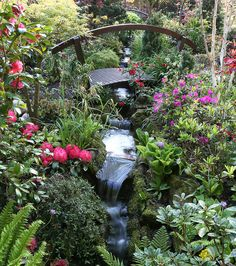 Garden stream in spring  (May 21) by Four Seasons Garden, via Flickr