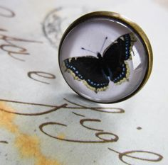 Blue Butterfly Ring - Steampunk Cabochon Natural History. £5.00, via Etsy.