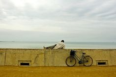 Man-and-bicycle-Casablanca-Morocco -- this Morocco Travel Blog is awesome!