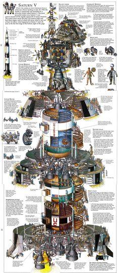 Saturn V (Illustration by Stephen Biesty)[2000x4570]