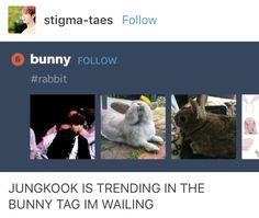 Rabbit boy hehe