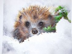 Hedgehog in winter - Watercolour