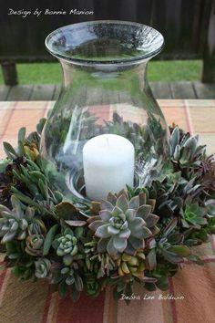 Succulent centre piece