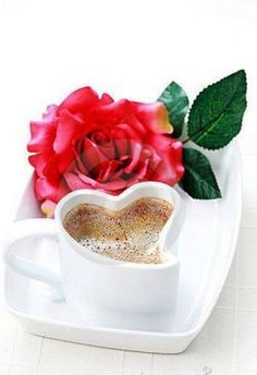 Never say no to a cup of coffee. Coffee Heart, I Love Coffee, My Coffee, Coffee Cups, Tea Cups, Coffee Gif, Coffee Images, Coffee Break, Good Morning Coffee