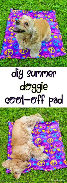 DIY Dog Cooling Pad Sewing Tutorial - Need to keep your dog cooled off in hot weather? Here is a DIY Dog Cooling Mat Tutorial that will keep your pooch cool while he's outside with the family. It's great pet bed for warm weather climates. It's easy to mak Dog Crafts, Animal Crafts, Chien Mira, Diy Pour Chien, Dog Cooling Mat, Diy Pet, Diy Dog Bed, Pet Beds Diy, Golden Retriever