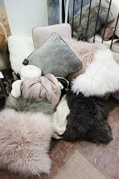 cozy pillows
