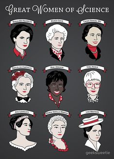 Great Women of Science {Set} Poster by geeksweetie - Science Shirts - Ideas of Science Shirts -