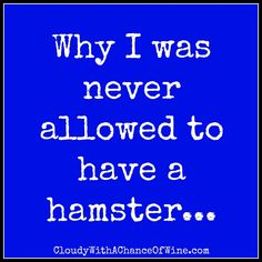 The hilarious story about that time, back in fourth grade, when I took the class hamster home for the weekend...