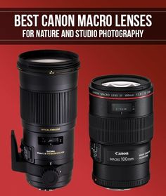 Best Canon Macro Lenses for Nature and Studio Photography Smashing Camera Canon Camera Tips, Dslr Camera Reviews, Camera Gear, Canon Cameras, Nikon Dslr, Digital Camera Lens, Digital Slr, Film Camera