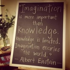 Imagination is more important than knowledge essay