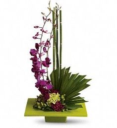 𝗭𝗲𝗻 𝗔𝗿𝘁𝗶𝘀𝘁𝗿𝘆 𝗣𝗹𝗮𝗻𝘁 Looking more like modern sculpture than a floral arrangement, this striking bouquet surprises with delicate purple orchids, mini bamboo and a colorful mix of blooms - sure to improve any room's feng shui. Tropical Flowers, Tropical Flower Arrangements, Exotic Flowers, Summer Flowers, Beautiful Flowers, Flowers Garden, Asian Flowers, Unique Flowers, Tropical Plants
