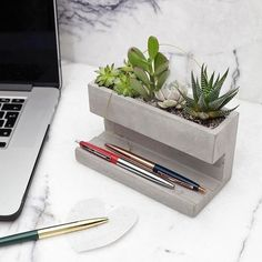 Concrete Desktop Planter by Kikkerland Design! Head to for more amazing projects! Cement Art, Concrete Art, Concrete Design, Concrete Color, Concrete Crafts, Concrete Projects, Hammock Swing Chair, Concrete Furniture, Pen Holders