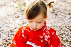 Cherry Blossoms, Little Girl in Kimono  Photos by Teresa Vice Photography