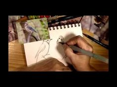 ▶ Sketching Birds with Cathy Johnson - YouTube