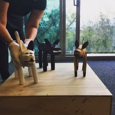 Setting up art work - Aurukun Dogs from Woolloongabba Art Gallery, for gather.festival 2016. Creative Director Melissa Blight of Twofold Studio. In kind supporters of gather. festival 2016  TWOFOLD STUDIO