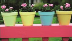 Tips & Tricks: Pot Bunga Flower Pots, Flowers, Go Green, Planter Pots, Marshmallow, Tips, Products, Colors, Ideas