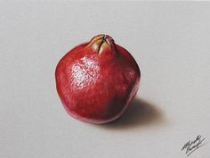 Pomegranate drawing by marcellobarenghi.deviantart.com on @deviantART