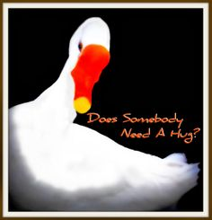"""Does Somebody Need A Hug?  . . . by v.scaglione"