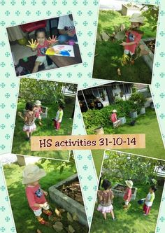 Theme plants