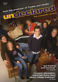Undeclared. everyone needs to watch this show. it's on Netflix