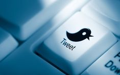 8% of Online Adults Use Twitter Every Day [STUDY]