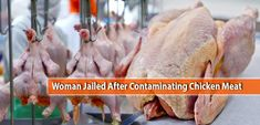 Woman Jailed After Contaminating Chicken Meat Meat Chickens, Poultry, Woman, Food, Backyard Chickens, Essen, Women, Meals, Yemek
