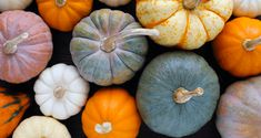 Pumpkins are an affordable, healthy choice. Discover all the powerful, proven health benefits of pumpkins and get a variety of healthy pumpkin recipes.