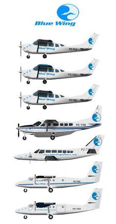 Blue Wings, Air Planes, Civil Aviation, Cutaway, Airports, Imagination, Aircraft, Ships, Auto Racing
