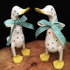 Two Rainbow Memory Ducks ready for their new home X