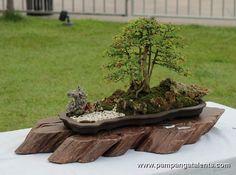 Image from http://www.pampangatalents.com/04_Gallery/Bonsai/Bonsai_Show/Landscape/slides/Landscape_Bonsai_7.JPG.