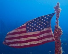 wreck diving, florida | Scuba Diving ♠ re-pinned by http://www.waterfront-properties.com/
