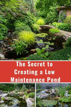 Make sure your pond pump is the correct size for your pond and waterfall. A pump provides valuable aeration to the water. Small Backyard Ponds, Outdoor Ponds, Backyard Ideas, Fish Pond Gardens, Small Gardens, Tropical Gardens, Modern Gardens, Pond Landscaping, Landscaping With Rocks