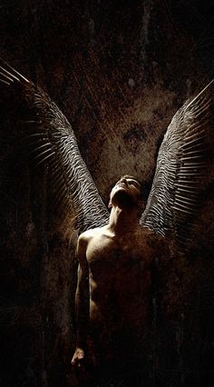 dreamsinthyme: Dark Lord spread his wings, he looked to the stars and smiled… for he would fly high tonight. Angels Among Us, Angels And Demons, Fantasy Creatures, Mythical Creatures, Male Angels, Male Fallen Angel, I Believe In Angels, Ange Demon, 3d Fantasy