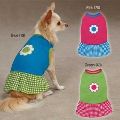 Gingham Sweeties Dog Dress Color: Blue, Size: Small East Side Collection http://www.amazon.com/dp/B007R8O6RG/ref=cm_sw_r_pi_dp_QM5Nwb0C9AWP4