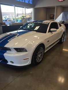 Cool Amazing 2014 Ford Mustang Shelby GT350 Ford Mustang GT350 Shelby Show Car 2018 Check more at https://24auto.cf/2017/amazing-2014-ford-mustang-shelby-gt350-ford-mustang-gt350-shelby-show-car-2018/