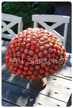 All Seasons: Malus appeltjes bol