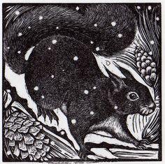 Eichhörnchen rosamund_fowler_wood_engraving_014