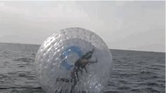 Water Zorbing | 10 Unusual Summer Sports You Should Try Once In Your Life