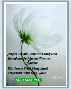 Muslim Quotes, Islamic Quotes, Congratulations Pictures, Me Quotes, Qoutes, Conversational English, Joko, Self Reminder, Be A Better Person