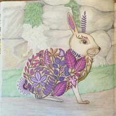 Johanna Basford Enchanted Forest Rabbit Prismacolor Pencils