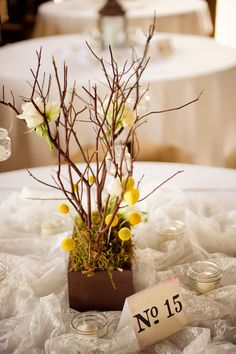 The yellow billy balls are very popular and I see them quite often in the fancy floral arrangements.