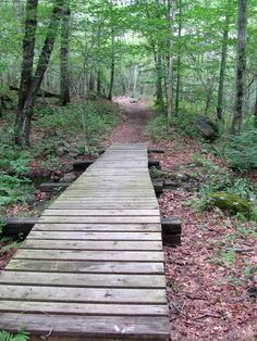 Asa Pond Walk, Peace Dale, RI, USA, photo by kfaella