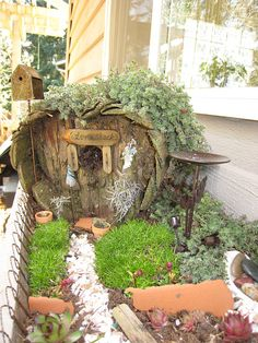 Front view of the fairy garden by lcaserelaxing, via Flickr