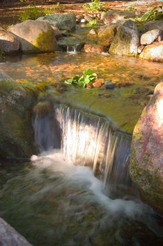 A spectacular backlit waterfall shared by Aquascape Designs. #WaterfallWednesday